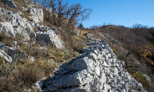 Staza kamenih stupi-INT00225
